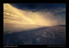 Golden Blizzard by uberfischer