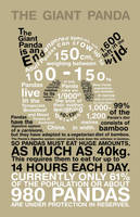 Panda Infographic by Lish-55