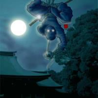 ninja by StudioZoo