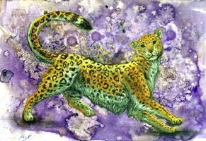 Amur Leopard by Werwal
