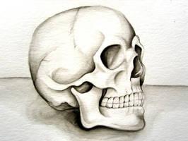 Watercolor Skull by Fallen-Pixie-Tears