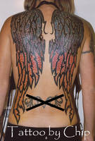 Wings by tattooedone