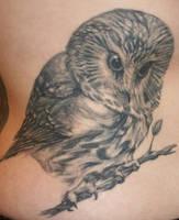 Owl by tattooedone
