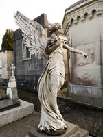 Cemetery angel 1 by dlambeaut