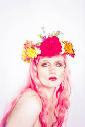 Flower crown by Sinned-angel-stock