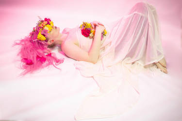 Flower crown 5 by Sinned-angel-stock