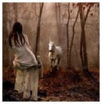 Unicorn by silenceee