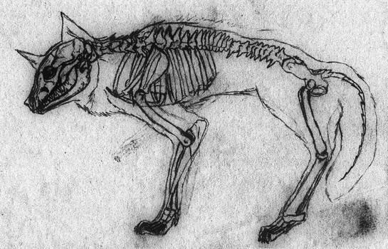 Skeleton (2016) by Serial-Painter