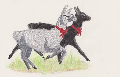 Runaway llamas! by Serial-Painter