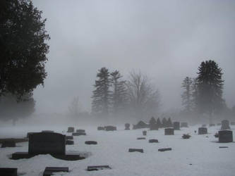 Desolation by PersephoneSyndicate