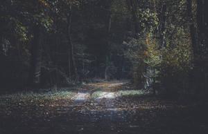 Hidden-path by coinside