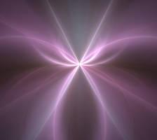Light Up My Life by erwebb