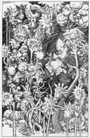 Anger Garden by Dubisch