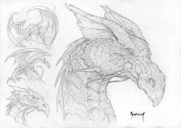 Dragon by Dubisch