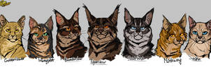 Heritage of Tigerstar by Belka-1100