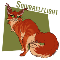 Squirrelflight by Belka-1100