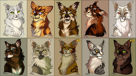 Fluff Love Cat Adoptables - 2/10 OPEN by Belka-1100
