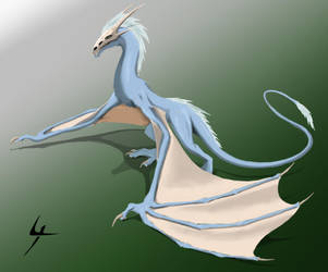 Wyvern by Jeremy-Burner