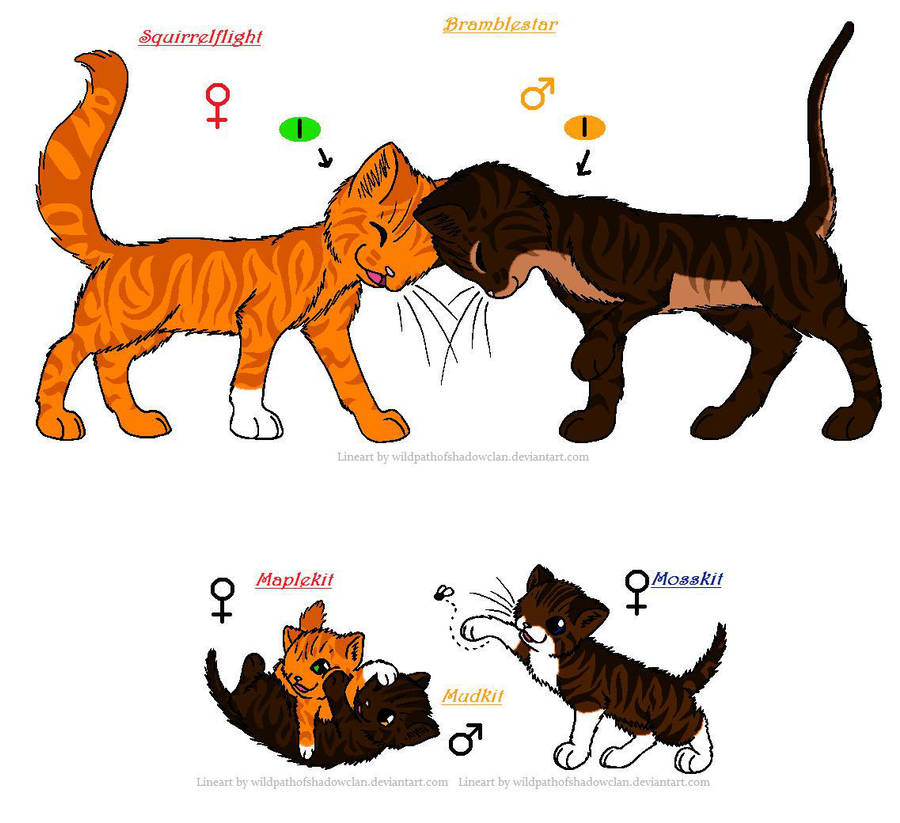 Warriors Erin Hunter Books In Order: Squirrelflight And Brambleclaw's Kits By P-E-P-R On DeviantArt