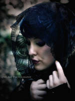 Black Bird by Live-ArtPhotography