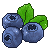 WC:Blueberries by amsa95