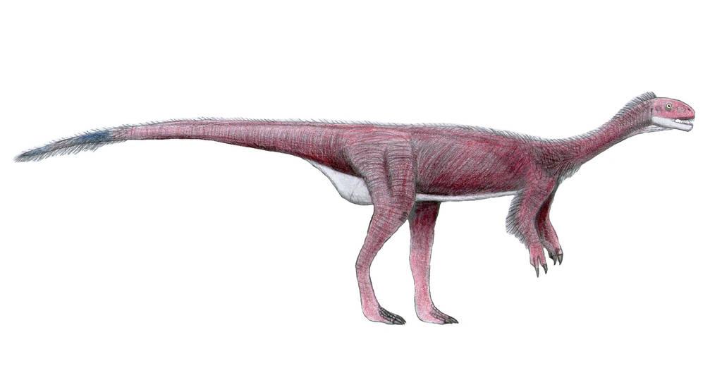 Chilesaurus diegosuarezi by LeviBernardo13