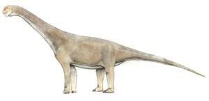Tehuelchesaurus benitezii by LeviBernardo13
