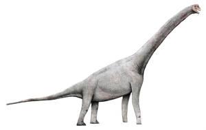Pelorosaurus brevis by LeviBernardo13