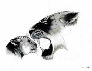 'SCOLDING' by KSowinski