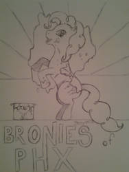bronies of Phoenix by jbrony04
