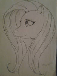 fluttershy head shot by jbrony04