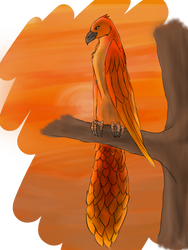 Phoenix by Shadeheart10