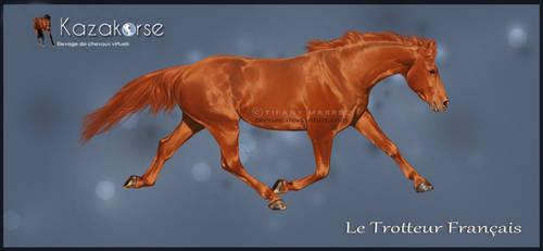 Kazakorse V3 : French Trotter by Seenae