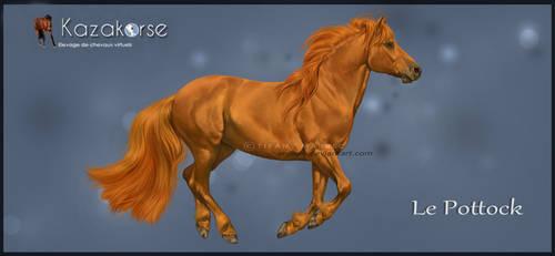 Kazakorse V3 : Pottock Pony by Seenae