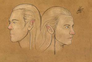Haldir and Celeborn by Moumou38