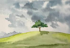 tree on a hill by Jennyben