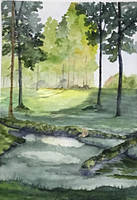Seven springs, Cannock Chase by Jennyben