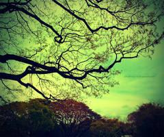 Lifeline by charmay13