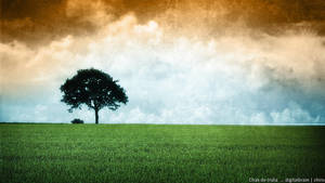 Chak de India ... by digitalbrain