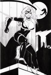 black cat and spider man by amorimcomicart