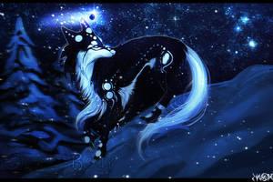 T: Polar Star by Snow-Body