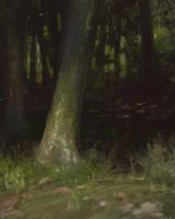 Tree Sketch by Wildweasel339