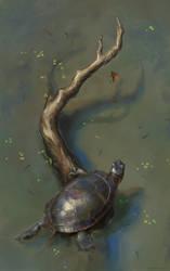 Final Catch by Wildweasel339