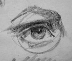 Eye by Wildweasel339