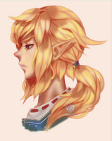 Link (Breath of the Wild) by Valkymie