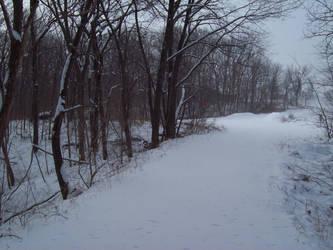 Snow 003 by AlnSue09