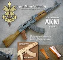 PM AKM by Hoborginc