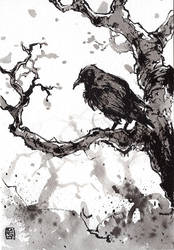 Raven in the tree sumi ink by MyCKs