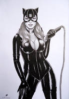 Catwoman by sidneydesenhus