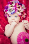 flower powerr by fotosister